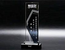 中国科技创新奖